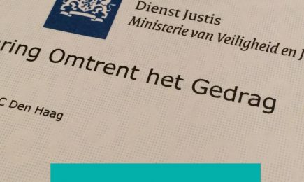 English Summary Pre-employment screening in the border regions of the Benelux and Germany